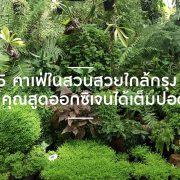 5 คาเฟ่ในสวนสวยใกล้กรุง ให้คุณสูดออกซิเจนได้เต็มปอด