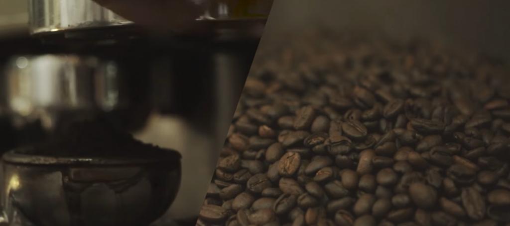 เมล็ดกาแฟสายพันธุ์ไทย